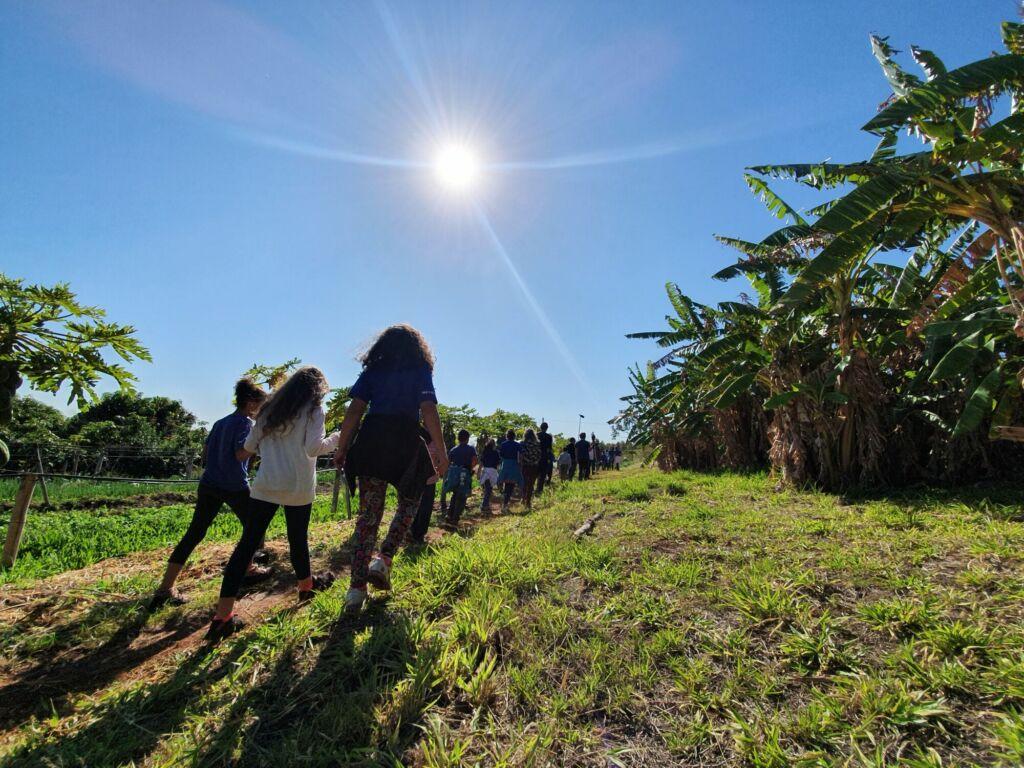 Dezenas de crianças vistas de costas passando por uma trilha. Elas foram fotografadas durante a gravação do projeto Sementes da Educação