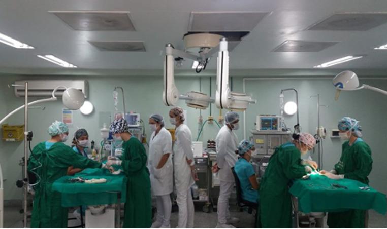 Hospital veterinário da UFF retoma atividades